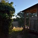 2.Seconde petite Maison_Bois_2